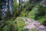 sentier-des-roches-29-3126319