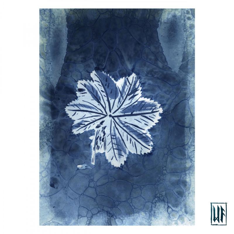 thumbnail-wet-cyanotype-1-3126333
